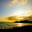 id:toshi_life