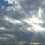id:toshiya4952