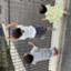 id:tosigomamakome