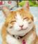tsuyukusa_k