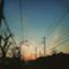 uenohou