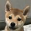 id:uretanonatsumu