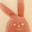 usako_carrot