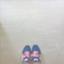 id:uw-dandelion0130
