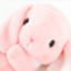id:waboyoshi