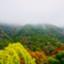 wadakogorou-weblog