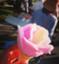 id:waiwai_soulmate