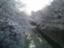 id:wanibuti
