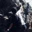 id:warpusk