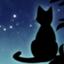 id:wildcat00