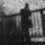 wisteria2_kozo