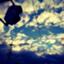 id:wo___101