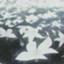 id:wotakuchang