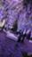 id:xoxo5296kk