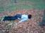 id:y_ice24
