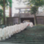 id:yamamiya3034