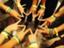 id:yamano3201