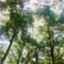 id:yamatetsu020752