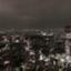 id:yasuyo4169