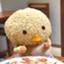 yomota_yomogi