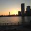 id:york11_gc