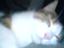 id:yosukenana