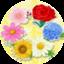 id:youichi_takada