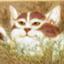 id:yoyoyosare