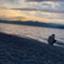 id:yuki_IJU
