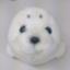 yuki_hirano