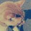 id:yukimi78