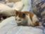 id:yuma-san4890