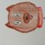 id:yumekanagirl