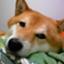 yusuke1031kun