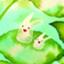 id:yutaka-y