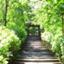 id:yutena