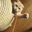 id:yutosuna