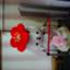 yuukigahosii24
