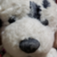 yuzu_sayuki