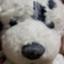 id:yuzu_sayuki