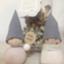 id:yuzuha-luna