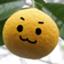 id:yuzukokolife