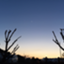 yzk_blog